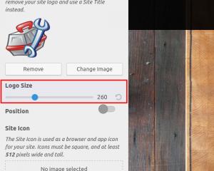 Adjust logo size
